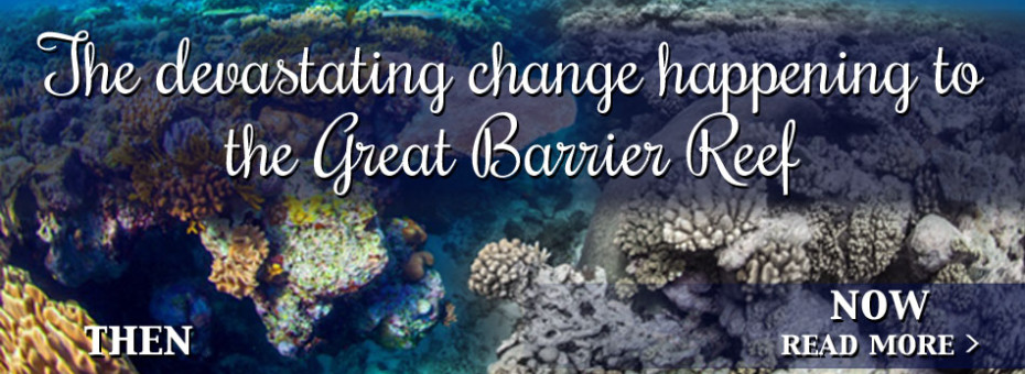 Great Barrier Reef Changes