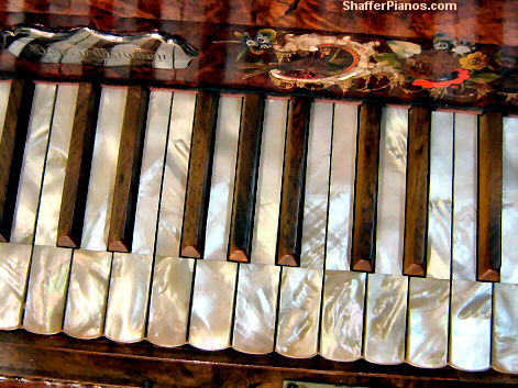 Mother of Pearl Piano Keys