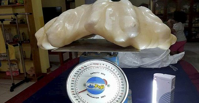 The world's largest pearl.