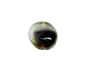 A freshwater pearl that has been cut in half.