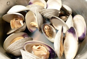 Steamed Quahog Clams